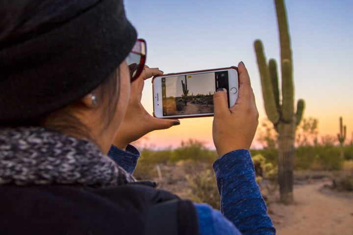 Mayo Clinic student takes a photo of a cactus in Phoenix, Arizona.