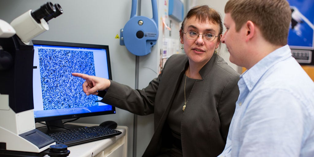 Mayo Clinic researcher reviewing imaging results with student