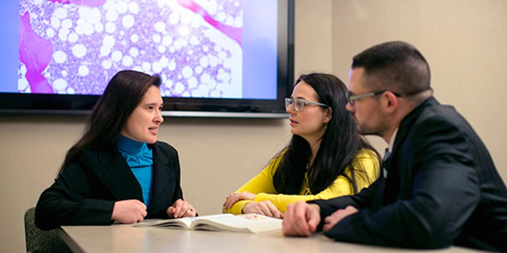 Two students sitting at a table with a faculty member discussing their research