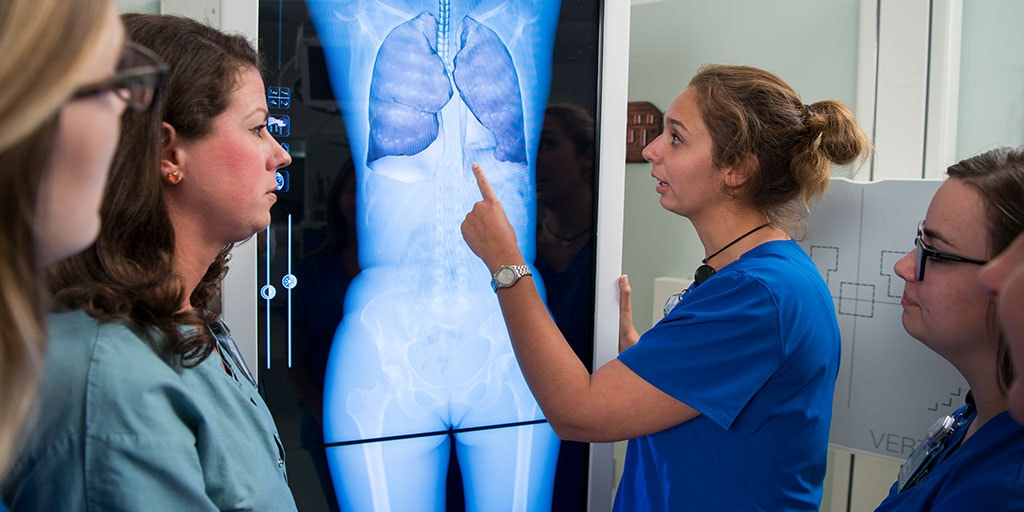 Mayo Clinic radiography students reviewing an imaging scan
