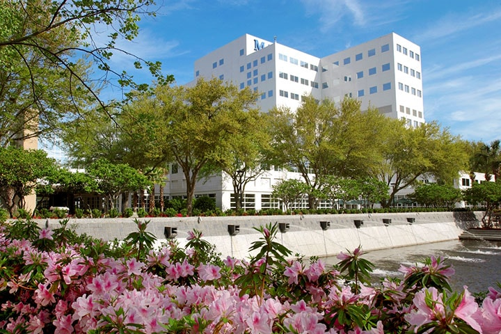 Health Sciences Education - Academics - Mayo Clinic College