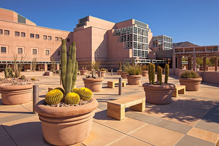 Check out the Mayo Clinic College of Medicine and Science campus in Phoenix/Scottsdale, Arizona